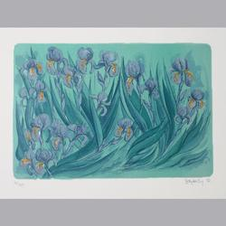 Brigitta Enz - Iris - Original Lithographie, 41/175, signiert - 76 x 56 cm